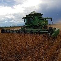 Relatório do USDA atualiza números para soja e milho
